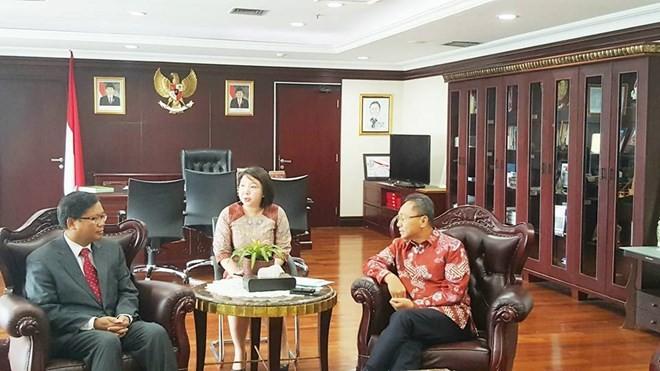 越南是印尼地区政策中的重心 - ảnh 1