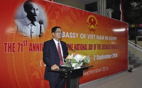 越南9.2国庆71周年纪念活动在国外举行 - ảnh 1