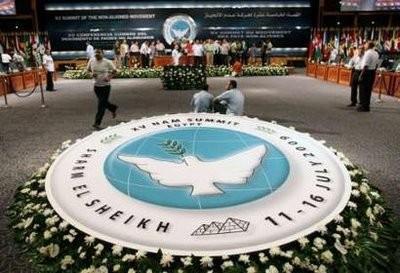 第17届不结盟运动首脑会议相关会议举行 - ảnh 1