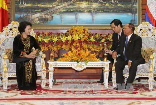 阮氏金银与柬埔寨国会主席韩桑林举行会谈 - ảnh 1