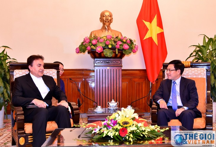 越南政府副总理兼外交部长范平明会见伊朗驻越大使萨利赫·艾迪比 - ảnh 1