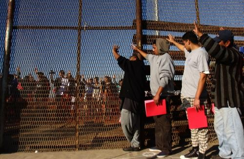 2016年赴欧洲的难民数量剧减 - ảnh 1