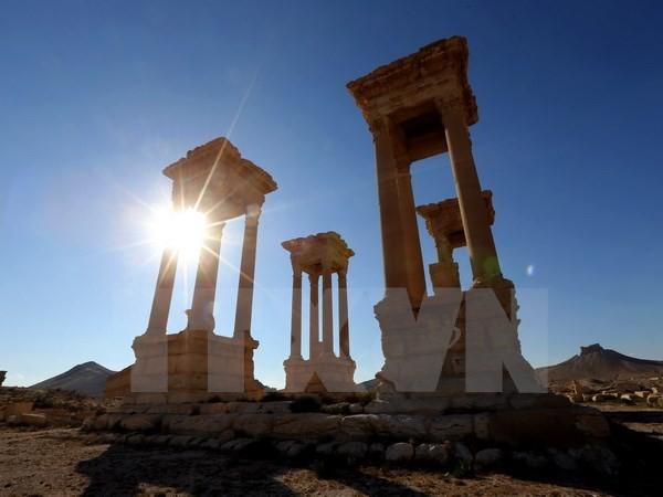 """联合国教科文组织谴责自称""""伊斯兰国""""极端组织破坏叙利亚文化设施 - ảnh 1"""