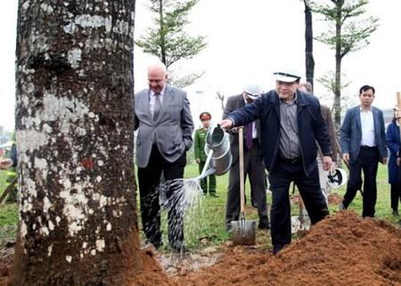 越南全国各地举行植树节 - ảnh 1