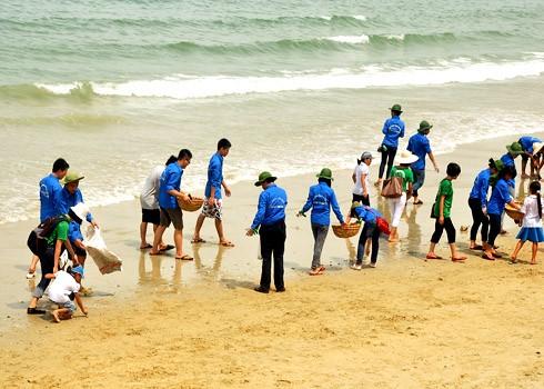 越南愿与国际社会一道保护海洋环境 - ảnh 1