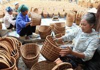 越南努力减少社会不平等现象 - ảnh 2