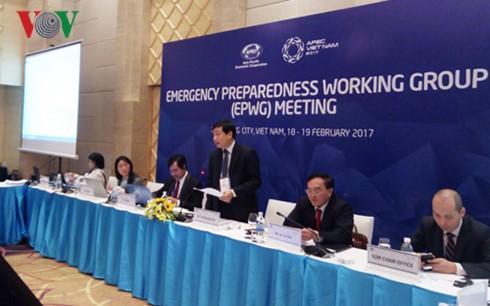越南在APEC工作组会议上提出多项倡议和建议 - ảnh 1