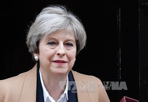英国脱欧:英欧自贸协定无法在两年内达成 - ảnh 1