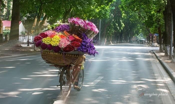 贩花自行车-默默的人生 - ảnh 1