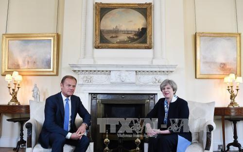 英国脱欧:欧盟在谈判前夕阐述强硬立场 - ảnh 1
