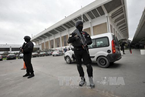 突尼斯挫败袭击该国首都突尼斯市国际机场的图谋 - ảnh 1