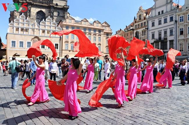 越南参加2017年捷克少数民族文化节 - ảnh 1