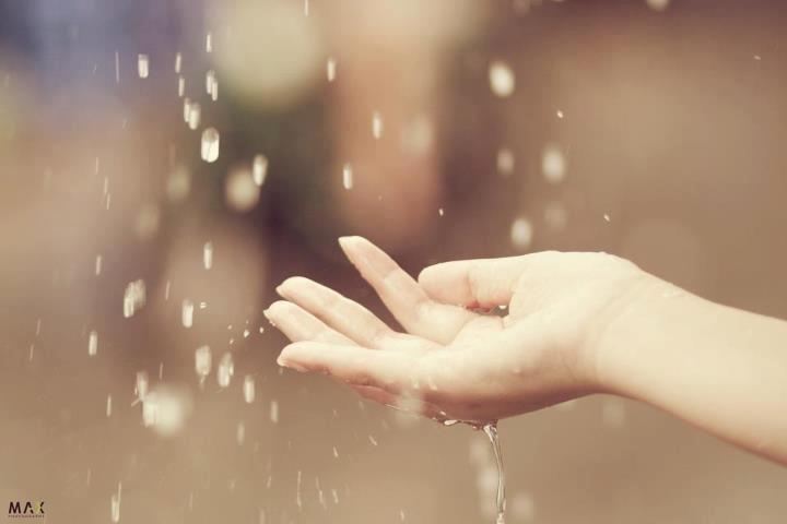 听雨唱歌 - ảnh 1