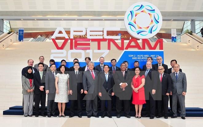 APEC 2017第三次高官会期间举行多场工作组和分委会会议 - ảnh 1
