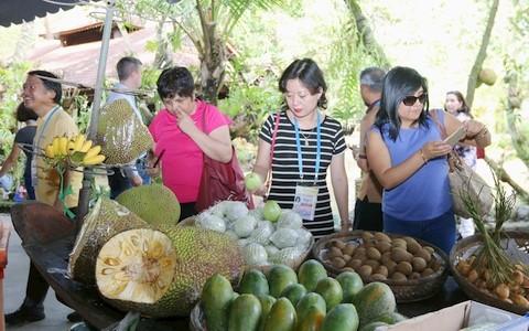 多场有关粮食和农产品的研讨会在芹苴市APEC粮食安全周期间举行 - ảnh 1
