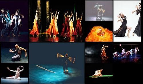 """6国艺术家参加在越南举办的""""亚欧相聚""""当代舞蹈节   - ảnh 1"""