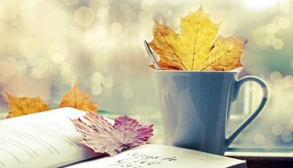 在音乐中体会秋给人心带来的韵味 - ảnh 1