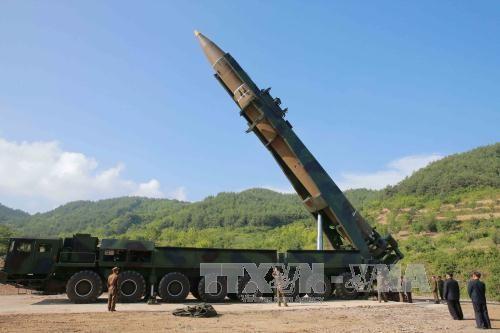 美国不会放弃对朝外交解决方案 - ảnh 1