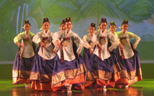 2017年国际舞蹈节在宁平省开幕 - ảnh 1