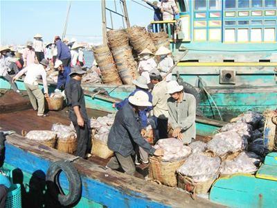 Réunion de la commission de la pêche d'Asie-Pacifique - ảnh 1