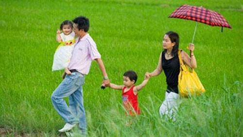 Meeting en écho à la journée de la famille vietnamienne - ảnh 1