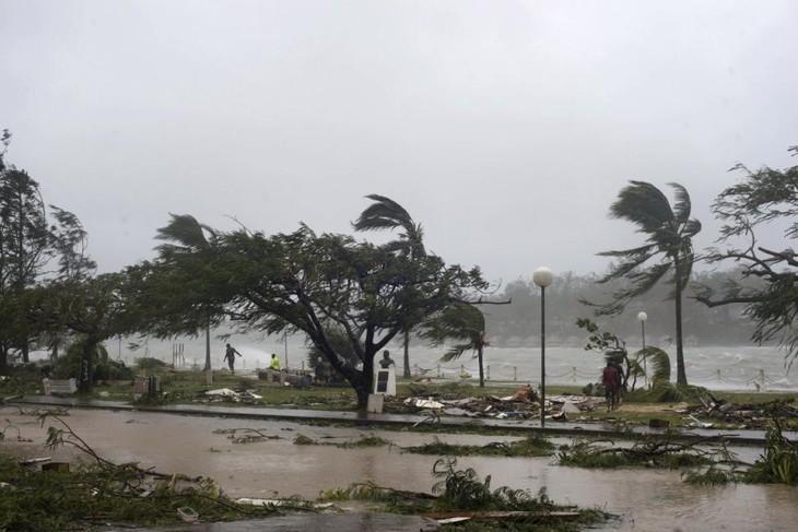 Vietnam sends its regards to Vanuatu over cyclone losses  - ảnh 1