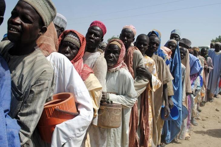 Joint forces arrest 400 Boko Haram gunmen - ảnh 1
