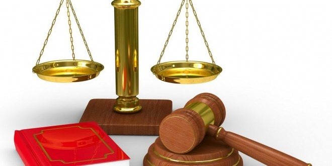 Lawyers provide legal assistance to people - ảnh 1