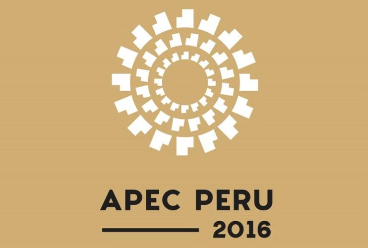 APEC summit promotes regional economic connectivity  - ảnh 1