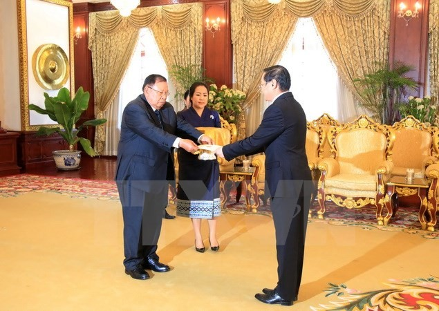 Vietnamese Ambassador submits credential letter to Lao President - ảnh 1