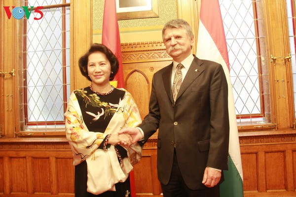 Vietnam aims to elevate relations with Czech and Hungary  - ảnh 1