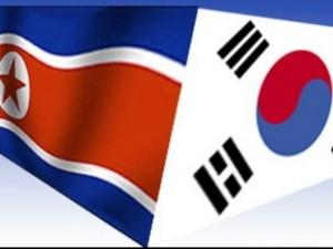 RDR Korea membatalkan usulan melakukan perundingan tentang reuni keluarga yang terpisah - ảnh 1