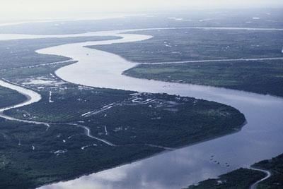 Sidang Pleno Komite sungai Mekong Vietnam – tahun 2013 - ảnh 1