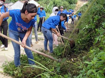 Mahasiswa sukarelawan ibukota Hanoi ikut membangun pedesaan baru - ảnh 1
