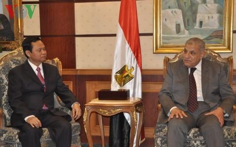 Inspektur Jenderal Huynh Phong Tranh mengadakan pertemuan dengan PM Mesir - ảnh 1