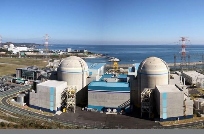 Amerika Serikat dan Republik Korea mencapai permufakatan tentang kerjasama energi nuklir - ảnh 1
