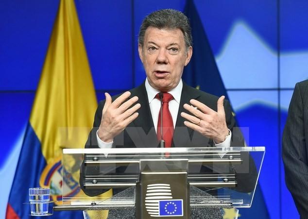 Pemerintah Kolombia dan pasukan FARC belum menanda-tangani permufakatan damai - ảnh 1