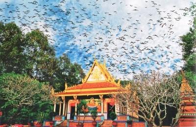Pagoda-pagoda Khmer yang unik di daerah dataran rendah sungai Mekong - ảnh 1