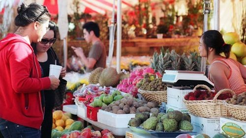 Vietnamese around the world celebrate Tet  - ảnh 1