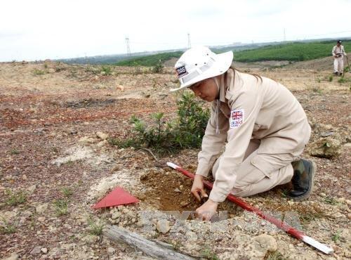 越南努力克服地雷遗害 - ảnh 3