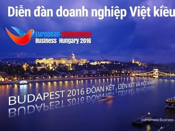 旅居欧洲越侨企业联合会举行企业论坛暨成立十周年纪念会 - ảnh 1