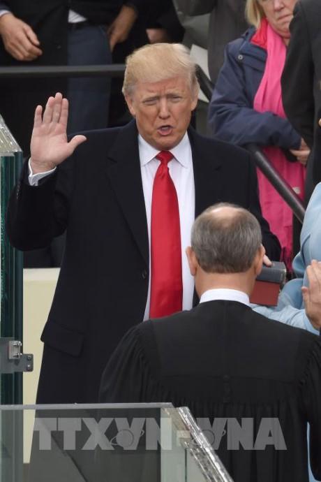 国际社会希望与美国新总统合作 - ảnh 1