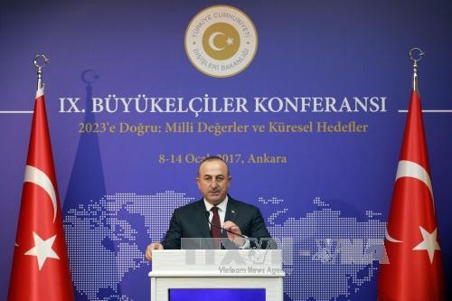 土耳其威胁将对希腊采取惩罚措施 - ảnh 1