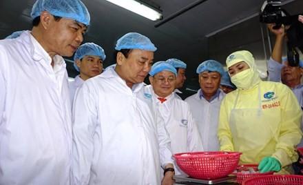 阮春福考察金欧省明富水产集团的出口虾加工模式 - ảnh 1