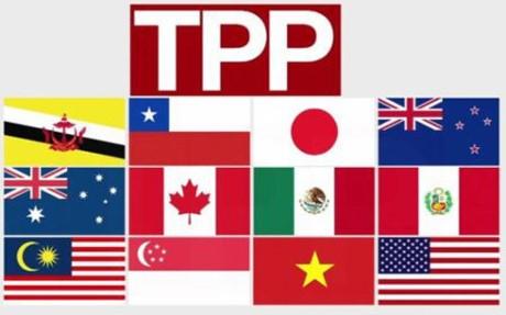 美日一致同意深化双边经贸关系 - ảnh 1