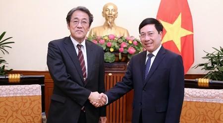越南政府副总理兼外长范平明会见日本驻越大使梅田邦夫 - ảnh 1