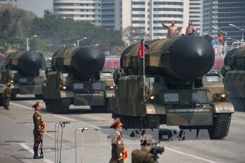 第9次韩美日安保会议讨论应对朝鲜核导威胁的协作方案 - ảnh 1