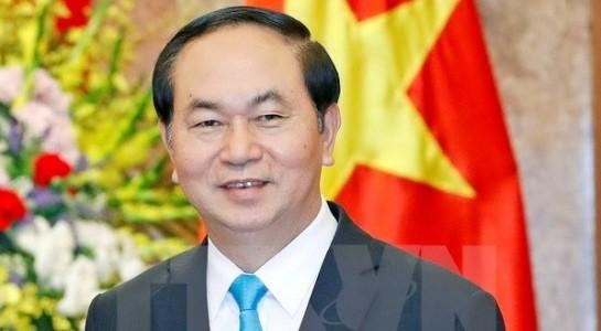 越南国家主席陈大光和夫人开始对中国进行国事访问 - ảnh 1