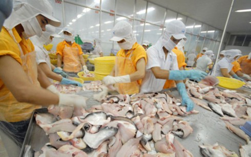 加大对中国市场的大宗商品出口力度 - ảnh 1