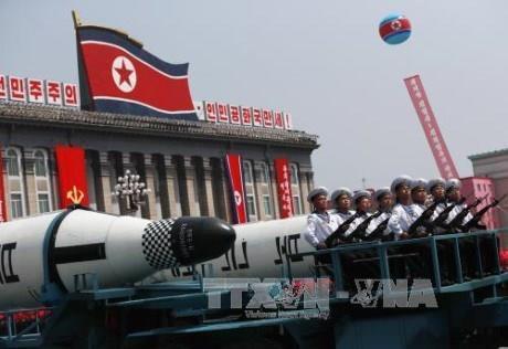 韩国承诺采取外交措施推动朝鲜半岛无核化 - ảnh 1